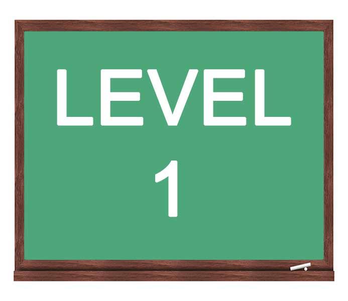 level-1-icon